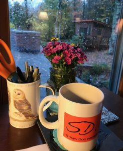Reflections on Writing Residency by two Straw Dog Members